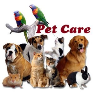 5bbd85c67c8441789_pet-care.jpg